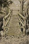 Wooden bridge across river in woodland in Thornham Parva, Suffolk, England
