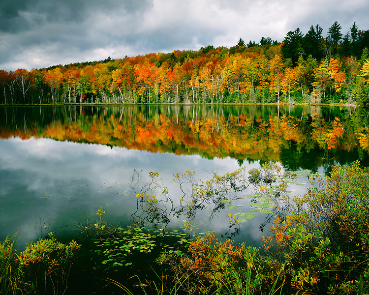 Sunrise light on storm clouds and fall color at Red Jack Lake in the Hiawatha National Forest; Upper Peninsula, MI