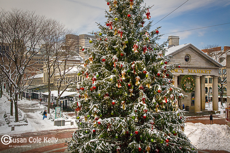 Fresh snow  at Quincy Market, Faneuil Hall Marketplace, Boston, MA