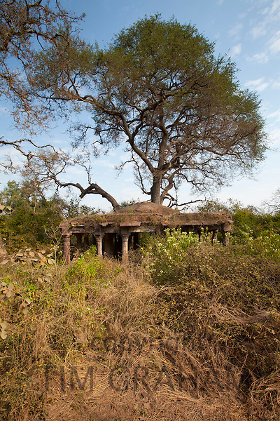 Hunting Lodge ruins by the entrance to Ranthambhore National Park, Rajasthan, Northern India