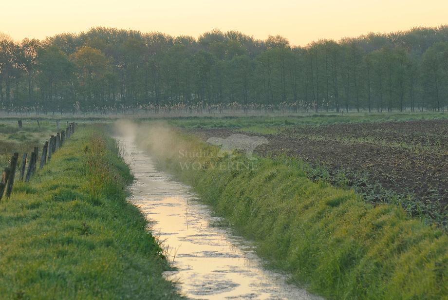 Slootje met ochtendmist te Haanwijk