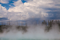 Norris Geyser Basin, Yellowstone.
