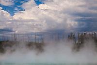 Norris Geyser Basin, Yellowstone.