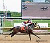 Rockyshomerun winning The Hard Spun Stakes at Delaware Park on 8/5/13
