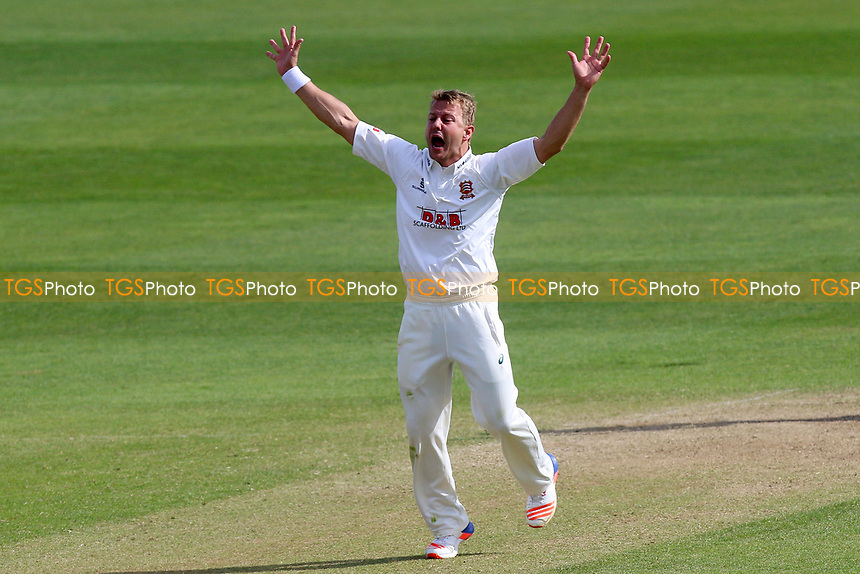 Neil Wagner of Essex with an appeal for a wicket during Somerset CCC vs Essex CCC, Specsavers County Championship Division 1 Cricket at The Cooper Associates County Ground on 15th April 2017