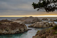 Point Lobos State Marine Reserve