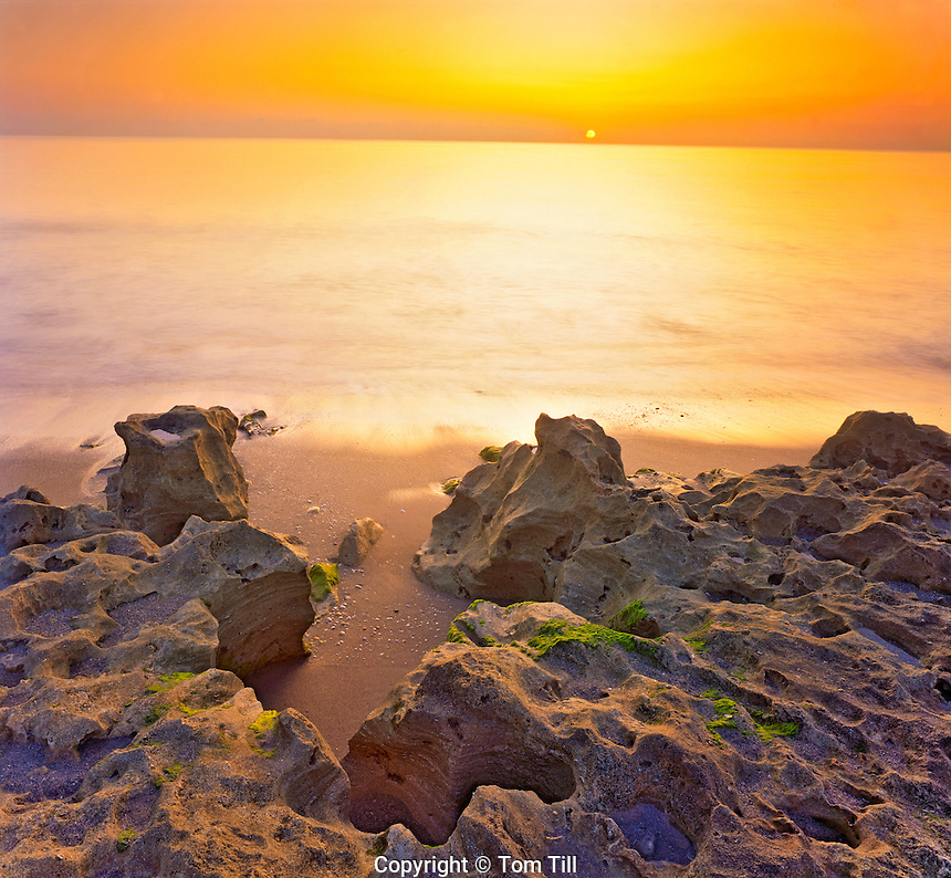 Limestone Outcrops at Dawn, Blowing Rock Preserve, Atlantic Coast on Jupiter Island, Florida