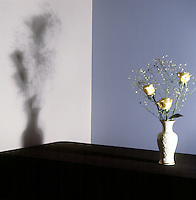 SHADOWS - Penumbra<br /> (3 of 3)<br /> The shadow is now entirely penumbra because the vase has been moved far enough away from the wall to diffuse or softer the entire shadow with light.