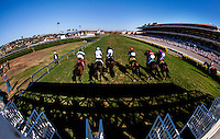 The field breaks for the Del Mar Mile at Del Mar Race Course in Del Mar, California on August 26, 2012.