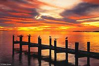 Pier at sunset, Fort Meyers, Florida