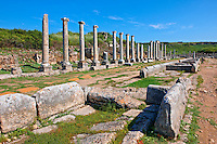 Ruins of the Roman Columned street which was lined with shops & stores. the troughs in the foreground were filled formed a canal with running  water from the Fountain of the Acropolis that ran down the middle of the street. Perge (Perga) archaeological site, Turkey