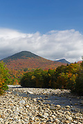 Autumn foliage on Big Coolidge Mountain from along the East Branch of the Pemigewasset River in Lincoln, New Hampshire on a cloudy autumn day. This mountain was logged during the East Branch & Lincoln Railroad era (1893-1948).