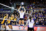 Cal vs UW Volleyball 11/12/10