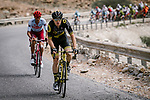 Pim Ligthart (NED) Direct Energie in action during Stage 4 of 10th Tour of Oman 2019, running 131km from Yiti (Al Sifah) to Oman Convention and Exhibition Centre, Oman. 19th February 2019.<br /> Picture: ASO/P. Ballet | Cyclefile<br /> All photos usage must carry mandatory copyright credit (&copy; Cyclefile | ASO/P. Ballet)