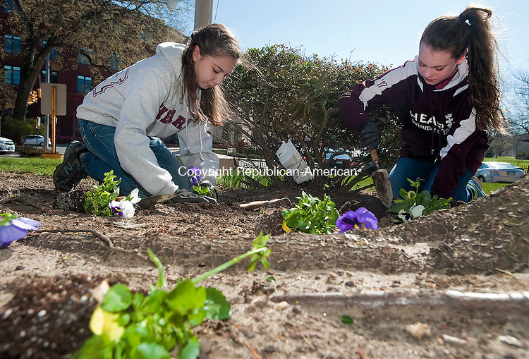 WATERBURY, CT-0424014JS01- Katerins Valente, 15, and Erin Brown, 14, both members of the Sacred Heart High School student council, plant flowers in front of the Republican-American building on Thursday as part of Earth Week and to thank the William J. Pape II, Editor and Publisher of the Republican-American,  for all of his support. Along with planting flowers, members of the student council also raked and cleaned up around the building.<br /> Jim Shannon Republican-American