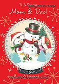 John, CHRISTMAS SANTA, SNOWMAN, WEIHNACHTSMÄNNER, SCHNEEMÄNNER, PAPÁ NOEL, MUÑECOS DE NIEVE, paintings+++++,GBHSSXC50-1427A,#x#