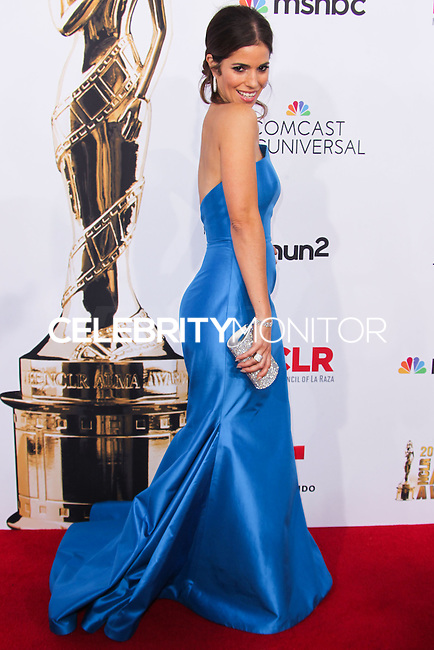PASADENA, CA, USA - OCTOBER 10: Ana Ortiz arrives at the 2014 NCLR ALMA Awards held at the Pasadena Civic Auditorium on October 10, 2014 in Pasadena, California, United States. (Photo by Celebrity Monitor)