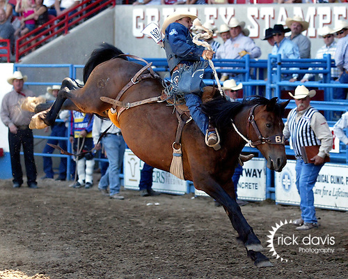 PRCA cowboy Billy Etbauer scores a 77 point ride on the Buetler & Son Rodeo Company bronc Paoli during the Cowboy Christmas run July 29, 2008 at the Greeley Independence Stampede Rodeo in Greeley, Colorado.