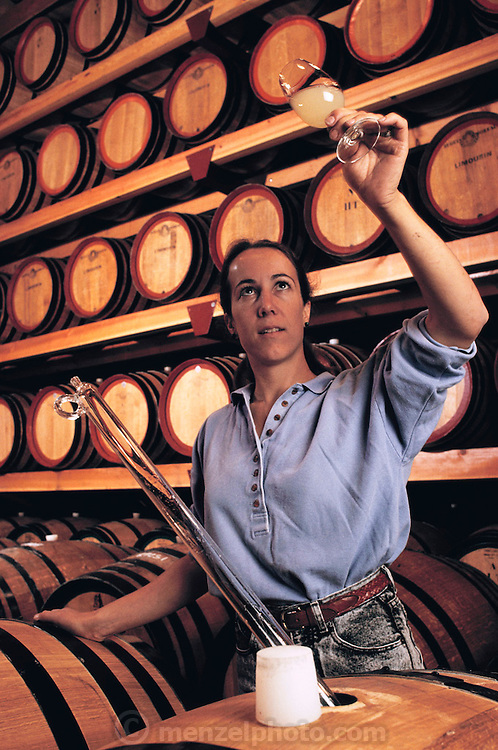 Johnson-Turnbull Winery in Oakville, Napa Valley, California.  Winemaker, Kristin Belair, inspecting a barrel sample of unfiltered white wine in the winery's barrel cellar. The winery was purchased in 1992 by Patrick O'Dell and renamed Turnbull Winery. MODEL RELEASED.