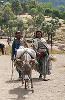 ETHIOPIA Lalibela, people from the villages going with donkey to the market/ AETHIOPIEN Lalibela, Menschen aus den Doerfern mit Esel auf dem Weg zum Markt