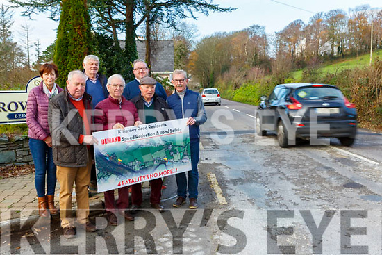Killarney Road residents in Killorglin are asking for speeding measures to be put in place to help slow down traffic outside their homes front row l-r: Jim Burns, Austin O'Reilly, Willie Fitzgerald and Fergus Foley Back row: Jenny O'Reilly, Donal O'Meara and Stephen O'Sullivan