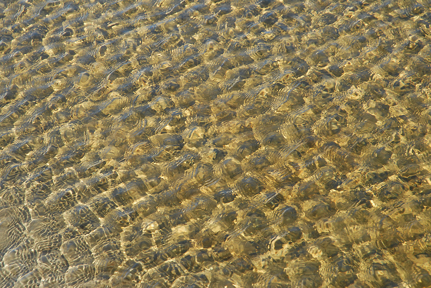 Rippling shallow water makes abstract geometric patterns over sand on a sunny day at Singing Sands.