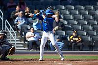Ethan Murray (1) of the Duke Blue Devils at bat against the Coastal Carolina Chanticleers at Segra Stadium on November 2, 2019 in Fayetteville, North Carolina. (Brian Westerholt/Four Seam Images)
