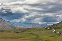 Denali park road transects the Thorofare flats, clouds obscures views of Mt Denali, visible from his location on a clear day, Denali National Park, Interior, Alaska.