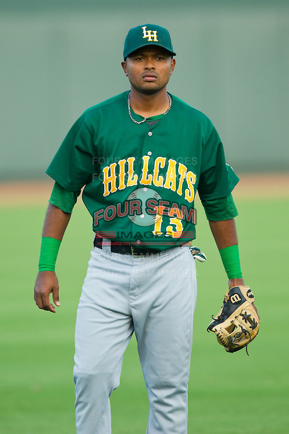 Elmer Reyes (13) of the Lynchburg Hillcats warms up in the outfield prior to the game against the Winston-Salem Dash at BB&T Ballpark on August 5, 2013 in Winston-Salem, North Carolina.  The Dash defeated the Hillcats 5-0.  (Brian Westerholt/Four Seam Images)