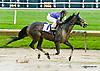 Oxford Street winning at Delaware Park racetrack on 6/12/14