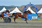 Nelson Harness Racing, 10 January 2020