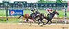 Doodle Hopper winning at Delaware Park on 7/12/17
