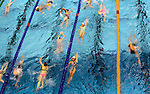 Action during the Swimming NZ, National Age Group Championships, Wellington Regional Aquatic Centre, Kilbirnie, Wellington, Monday 18 April 2016. Photo: Simon Watts/www.bwmedia.co.nz