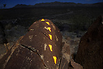 Making Tracks, Three Rivers Petroglyph Site, New Mexico