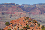 Backpacker on South Kaibab Trail
