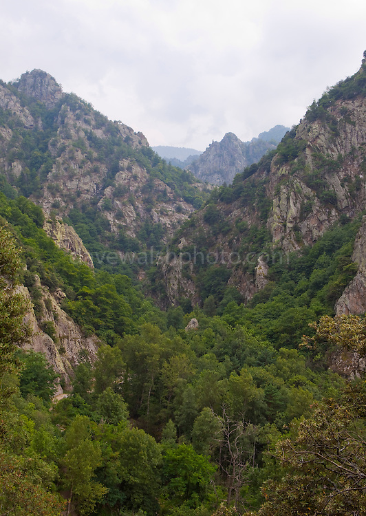 The Gorges du Cady, near Vernet-les-Bains, France.