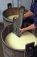 """Europe/France/Auvergne/15/Cantal/Env de Cheylade: Préparation du fromage à la ferme de Jean-Pierre et Régine Rodde - Producteurs de Fromage Salers au lieu-dit """"Le Caire"""""""