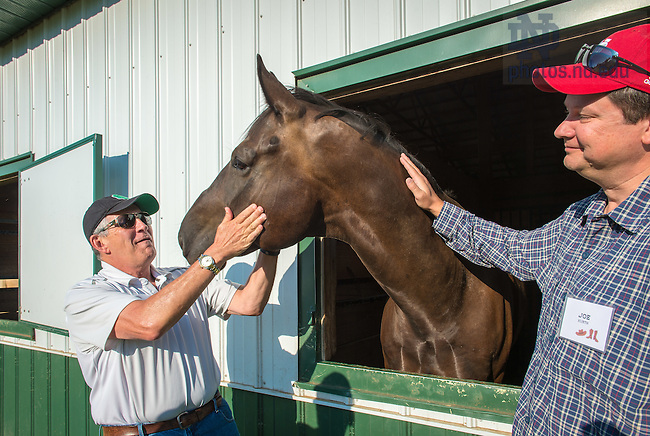 Aug. 13, 2015; Mike Low, Director of Licensing and Joe Kurth, Director and GM of the Morris Inn and Notre Dame Conference Center, greet a horse at the Lucky Horse Equestrian Center in Niles, Michigan. The office of the Executive Vice President held a retreat and team-building exercise where participants learned to use teamwork and non-verbal communication techniques to communicate with and direct the movement of horses.  (Photo by Matt Cashore/University of Notre Dame)