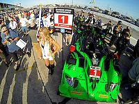 The #1 HPD ARX 03b of Scott Sharp, Ryan Dalziel and David Brabham on the grid before the 12 Hours of Sebring, Sebring International Raceway, Sebring, FL, March 2014.  (Photo by Brian Cleary/www.bcpix.com)