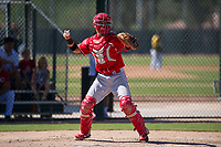 Cincinnati Reds catcher Victor Ruiz (87) on defense during an Instructional League game against the Oakland Athletics on September 29, 2017 at Lew Wolff Training Complex in Mesa, Arizona. (Zachary Lucy/Four Seam Images)