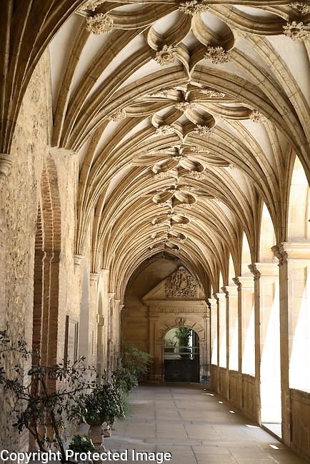 Cloister, San Isidoro Church, Leon, Spain