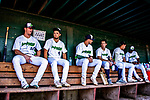 3 September 2018: Members of the Vermont Lake Monsters sit in the dugout awaiting the start of play against the Tri-City ValleyCats at Centennial Field in Burlington, Vermont. The Lake Monsters defeated the ValleyCats 9-6 in the last game of the 2018 NY Penn League regular season. Mandatory Credit: Ed Wolfstein Photo *** RAW (NEF) Image File Available ***