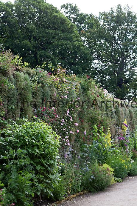 Summer border in the Upper Garden at Haddon Hall