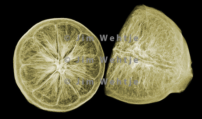 X-ray image of freeze-dried lemon halves (color on black) by Jim Wehtje, specialist in x-ray art and design images.