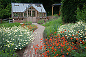 Greenhouse and garden, early June. Planting includes Anthemis tinctoria 'Sauce Hollandaise' and Geum 'Fire Opal'.