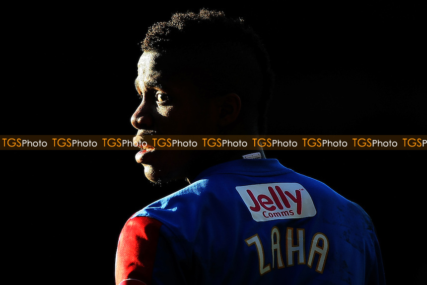 Wilfried Zaha (Crystal Palace) looks ahead as the sun hits his face - Crystal Palace vs Leicester City - nPower Championship Football at Selhurst Park Stadium, London - 02/01/12 - MANDATORY CREDIT: George Phillipou/TGSPHOTO - Self billing applies where appropriate - 0845 094 6026 - contact@tgsphoto.co.uk - NO UNPAID USE.