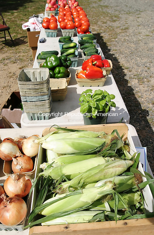 WOODBURY, CT- 10 SEPTEMBER 2005-091005BZ14- Apples, peppers, corn, onions, and other vegetables for sale by Rich Perrotti, of Cheshire, at the flea market in Woodbury Saturday morning.<br /> Jamison C. Bazinet / Republican-American