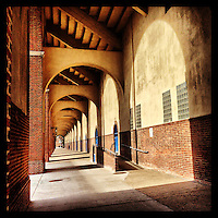 The sun casts shadows under the south stands of Franklin Field on February 25, 2013.