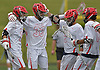 Sean Lulley #33 of Hills East, second from left, gets congratulated by teammates after scoring the opening goal of the game in the first quarter of the Suffolk County varsity boys lacrosse Division I (Class A) quarterfinals against Commack at Half Hollow Hills High School East on Friday, May 19, 2017. He scored three goals in Hills East's 11-9 win.
