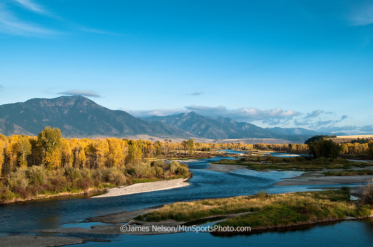 Cottonwood trees display their autmn colors during an autumn afternoon on the South Fork of the Snake River, Idaho.